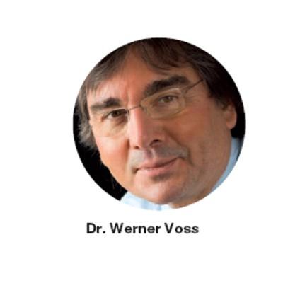 Werner Voss